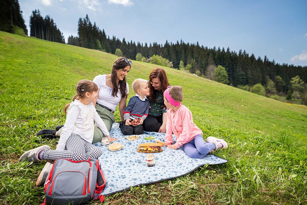 Spa hotel Lanterna piknik