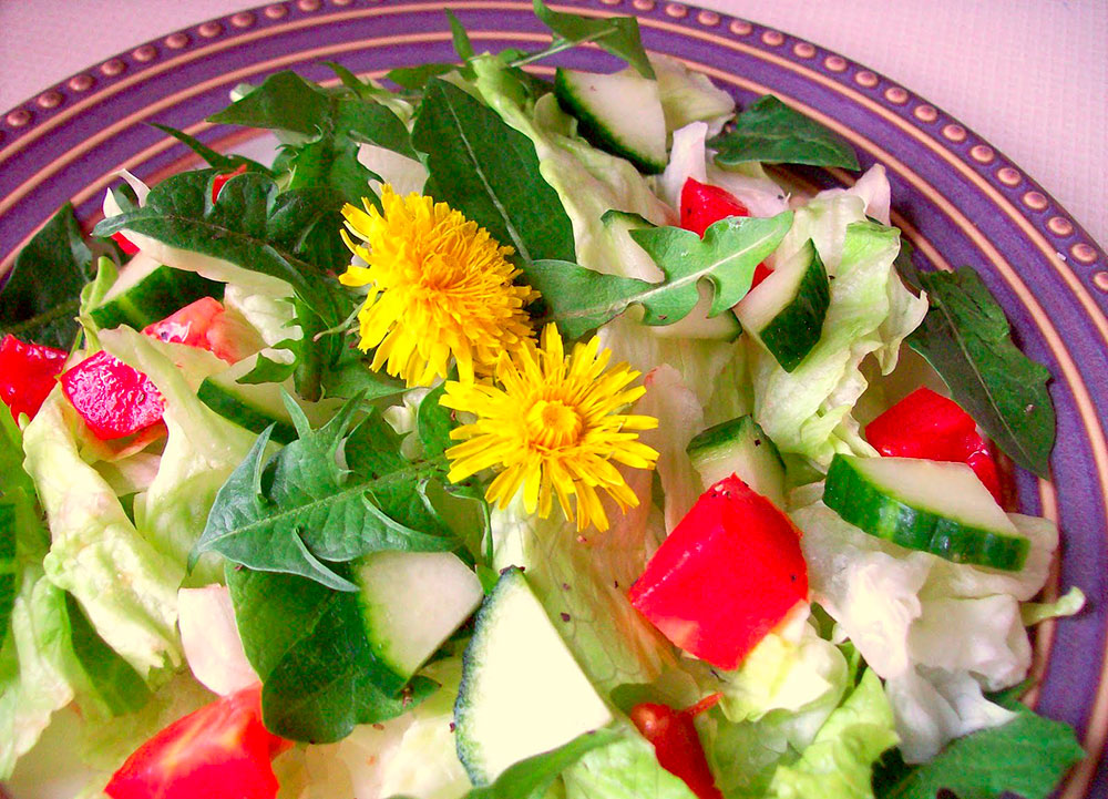 Salát v Nebespánu