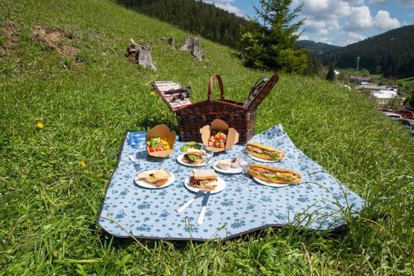 S piknikovým košem, nebo batohem můžete vyrazit na výlet., Foto: www.lanterna.cz