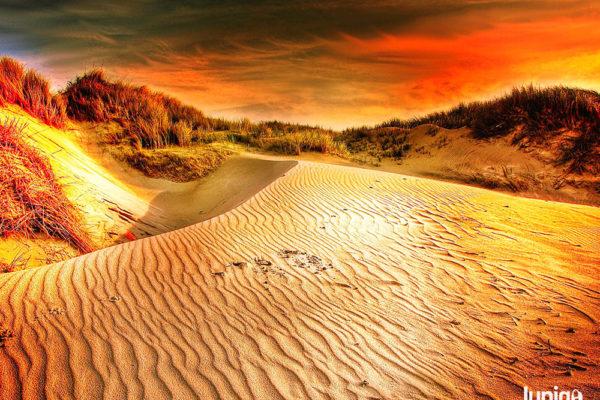 S písečnými pouštěmi se můžete setkat i na několika místech České republiky. Foto: www.jupigo.com